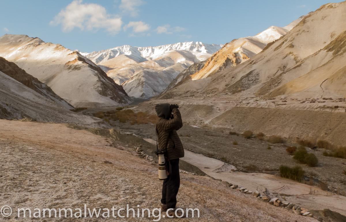 Jon Hall, Ladakh