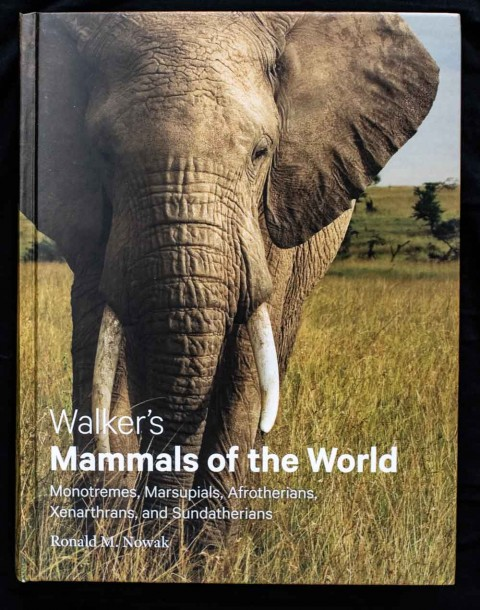 A Review (a long review) of the latest version of Walker's Mammals of the World