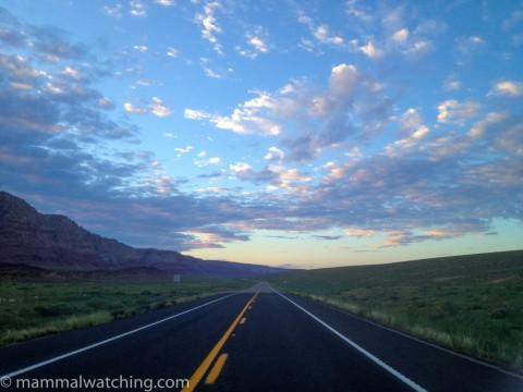 New Mexico & Arizona Trip Report