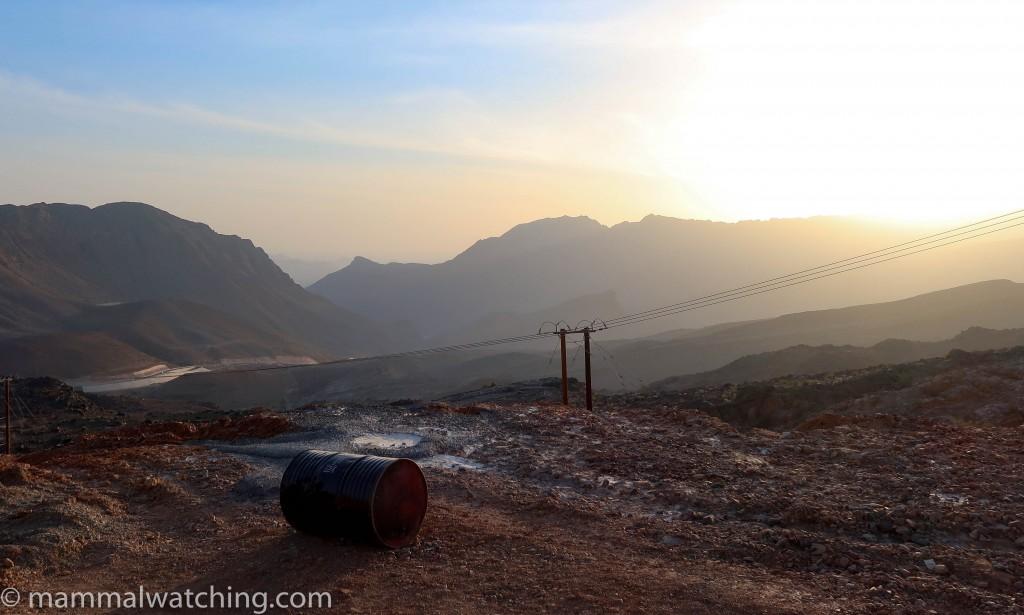 New Trip Report: Wadi Al Muaydin, Oman