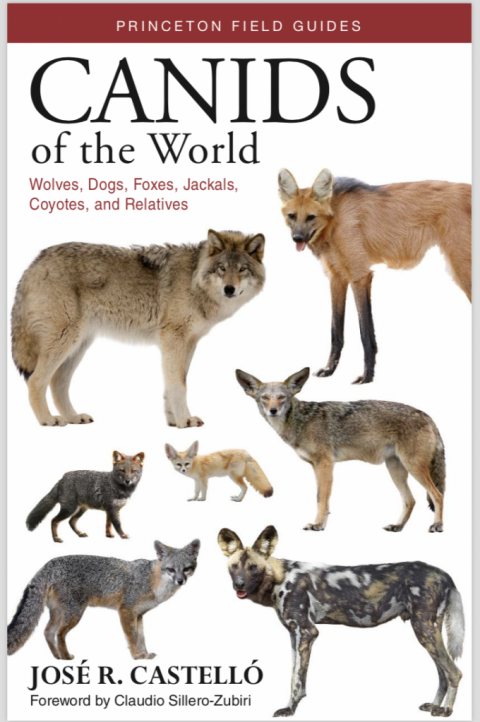 Book Review: Canids of the World