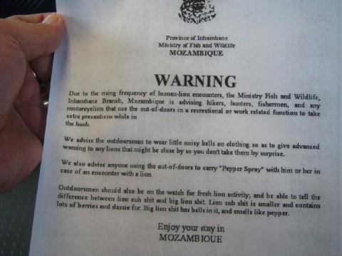 Lion Warning