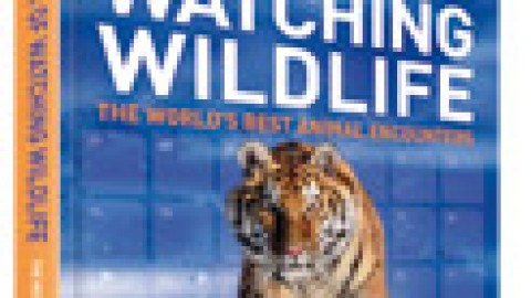 Lonely Planet's A Year of Watching Wildlife