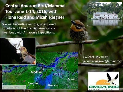 A 2016 trip to the Central Amazon?