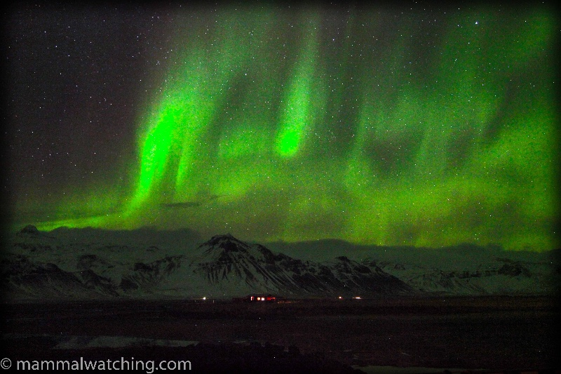 20140302-Northern-Lights