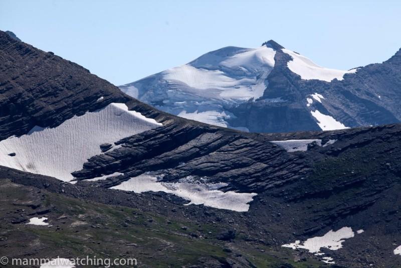 2014-Glacier-National-Park-1-1