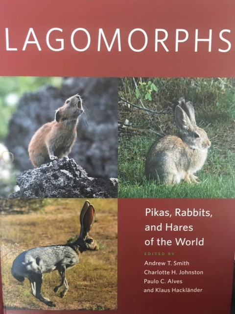 Book Review – Lagomorphs: Pikas, Rabbits and Hares of the World