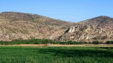 New Trip Report: Long Weekend in Oaxaca