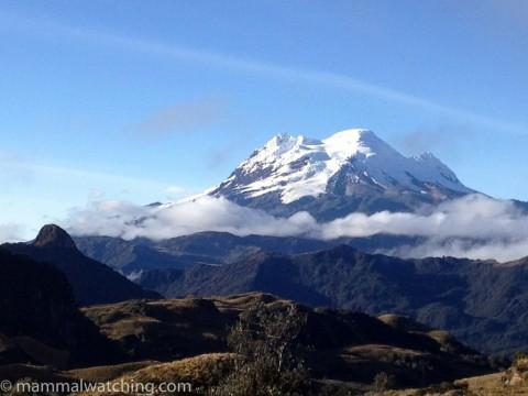 Ecuador, 2012