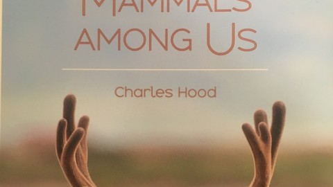 Book Review: A Californian's Guide to the Mammals Among Us