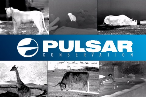 Pulsar Thermal Scopes & Night Vision