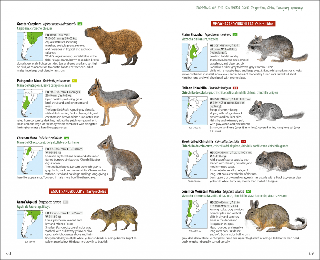 Book Review: Mammals of the Southern Cone (Lynx Illustrated Checklist) -  Mammal Watching