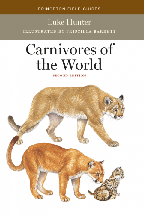 Book Review: Carnivores of the World (2nd edition)