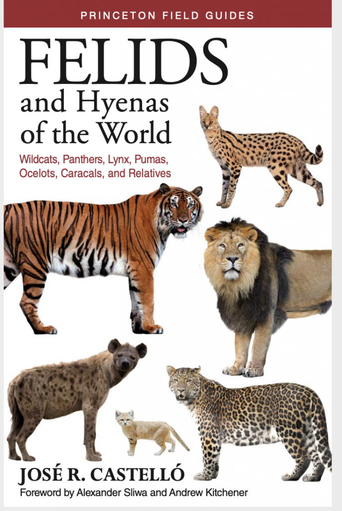 Book Review: Felids and Hyenas of the World, José R. Castelló (Princeton Field Guide)