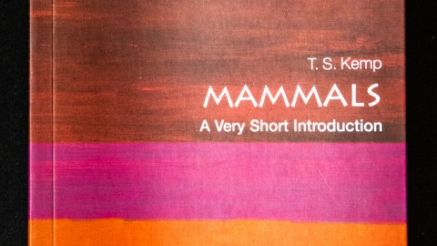 "Book Review: ""Mammals: A Very Short Introduction"""