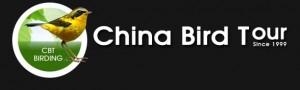 chinabirdtour