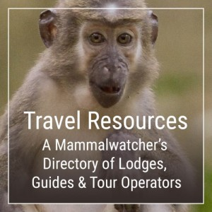 A Mammalwatcher's Directory of Lodges, Guides & Tour Operators